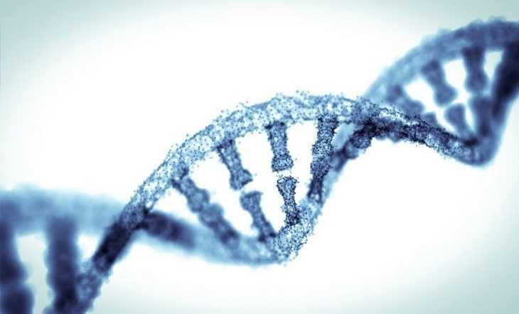 Sweeping gene survey reveals new facets of evolution