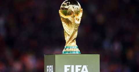 FIFA WC trophy now in Moscow after global tour