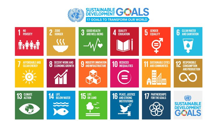 Experts for developing infrastructure to achieve SDGs