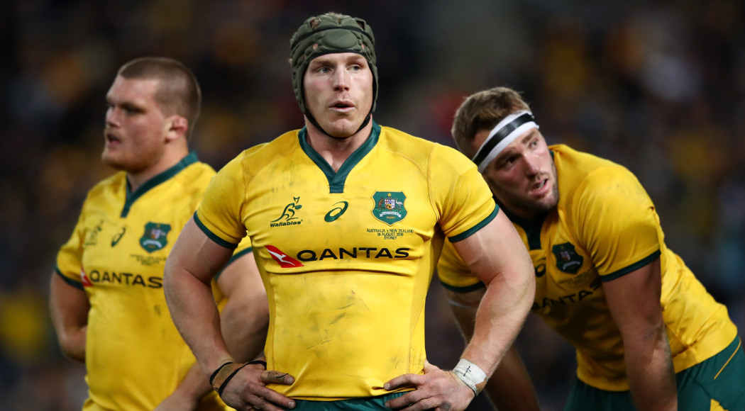 Pocock ruled out of Springboks clash with neck injury