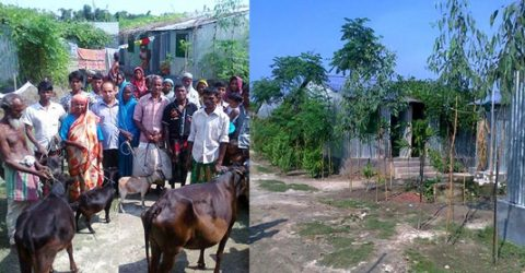 Asrayan changes fortune of 2,660 families in Gangachara