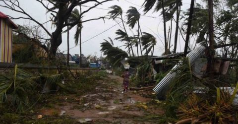 Death toll rises to 57 after cyclone Titli hits India