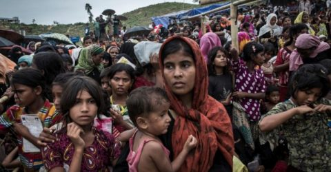 Dhaka to seek OIC finance for Gambia's legal battle over Rohingyas