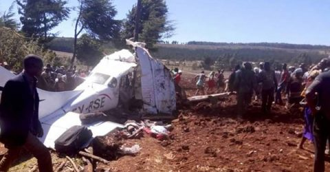 Kenyan, four foreigners killed in plane crash: police