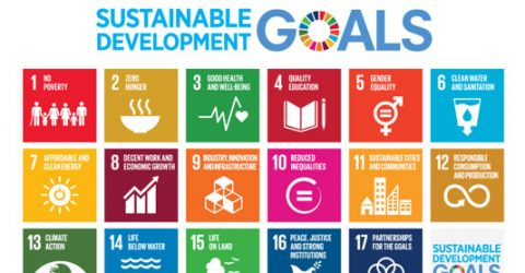 Bangladesh doing well in SDGs: report