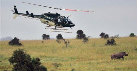 Four US tourists, pilot killed in Kenya chopper crash