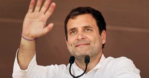 Rahul Gandhi to contest from Wayanad and Amethi