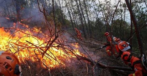 East Siberian fires leave 17 injured: emergencies ministry