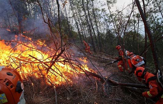 East Siberian fires leave 17 injured: emergencies ministry