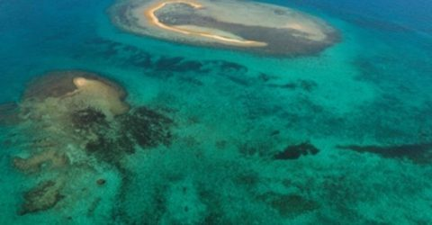 Palau tells Australia to step-up on climate