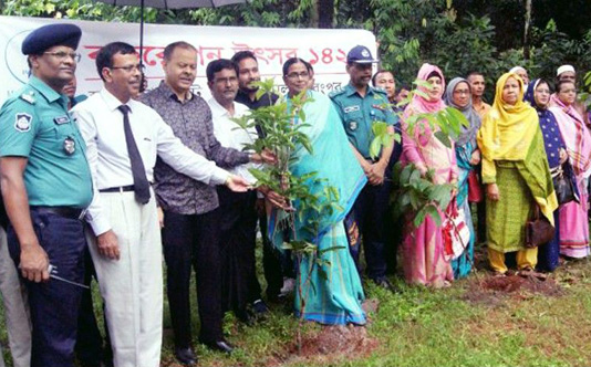 Tree plantation underscored to adapt to climate change