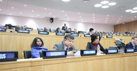 Bangladesh tables resolution at the UN on natural fibers