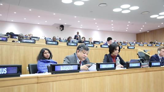 Bangladesh tables resolution at the UN on natural fibers