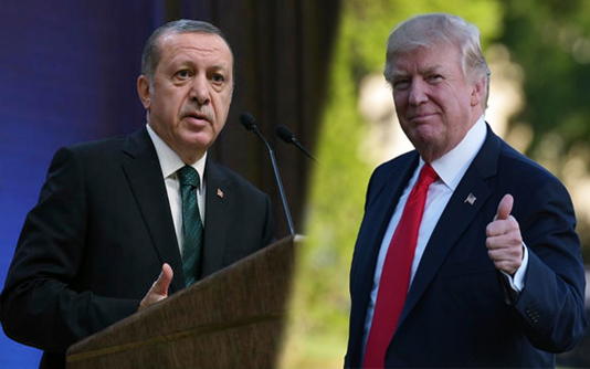 Erdogan, Trump announce Washington talks on November 13
