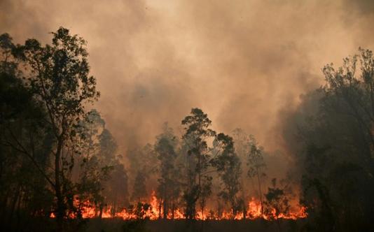 Greater Sydney faces 'catastrophic' bushfire threat