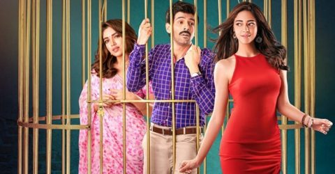 Kartik, Bhumi and Ananya try to recreate cult comedy