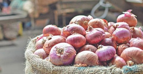 Onion price reduces at wholesale level