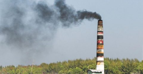 Formulate policy to curb air pollution: HC
