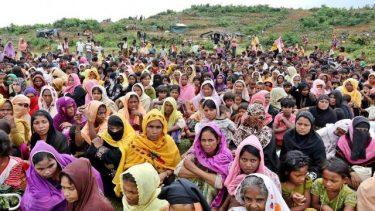 Dhaka welcomes Gambia for suing Myanmar over Rohingya genocide