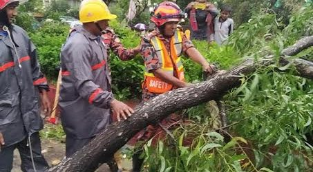 Cyclone 'Bulbul' destroys 9,455 homesteads in Khulna