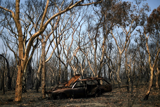 Relief as rain falls over Autralian bushfires