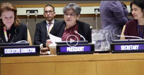 Bangladesh envoy Rabab Fatima elected president of UNICEF's Executive Board