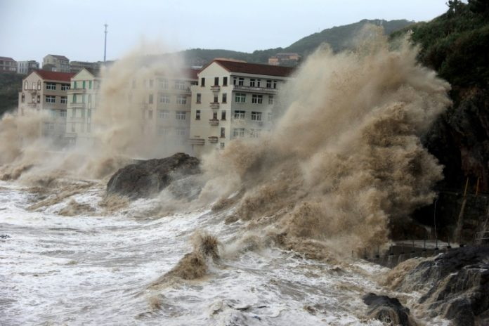 Multiple eco-crises could trigger 'systemic collapse': scientists