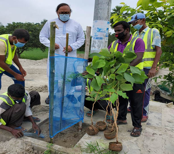 Extensive tree plantation stressed to reduce carbon emission