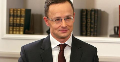 Hungarian FM due tomorrow on a day's visit