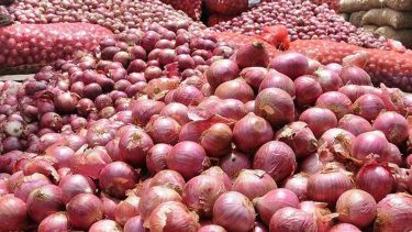 Dhaka expresses 'deep concern' over India's onion export ban