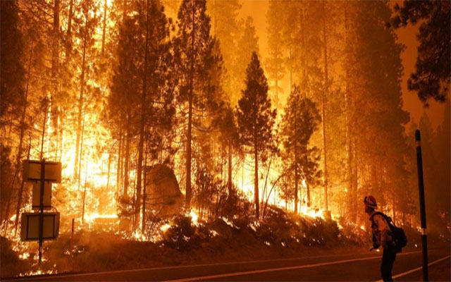 Alert Five counties in California declare state of emergency for aggressive wildfire