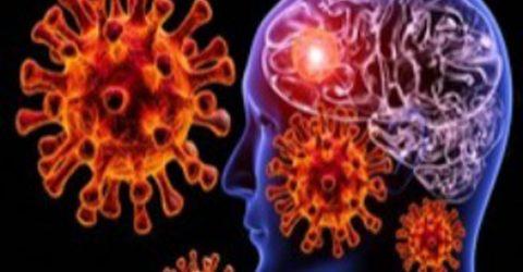 Coronavirus can infect brain tissue, affect memory, language: Brazilian study
