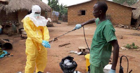Ebola outbreaks in Guinea, DRC stoke new fears in Africa