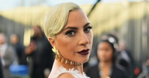 'My heart is sick': Gaga offers $500,000 for stolen dogs