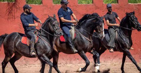 Horse-whisperer hopes Morocco films return at full gallop