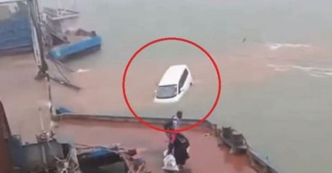 Driver missing as microbus plunges into Padma