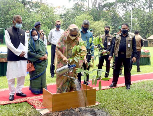 PM launches National Tree Plantation Campaign