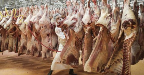 US subsidiary of meat-packing giant JBS hit by cyberattack