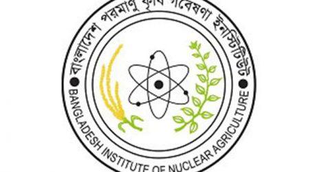 BINA, its chief scientist get IAEA awards